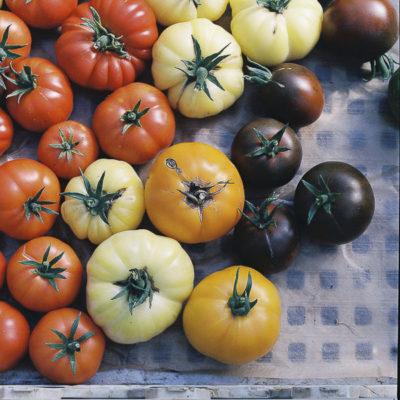 photographe culinaire en IDF, tomates