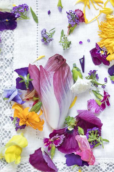 Aurore Deligny, photographe culinaire en IDF, endive poudre et fleurs comestibles